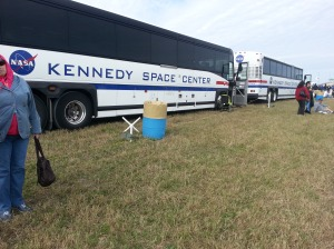 Many shuttle buses bring tours out to watch